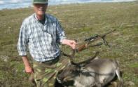 Rensdyr jagt